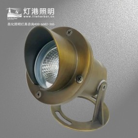 DG5204 LED投光灯