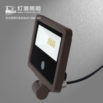 DG5212-感应LED投光灯/楼体投光灯/LED照树灯/户外投光灯