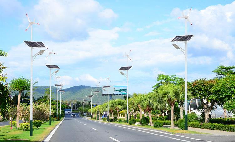 太阳能路灯应用案例-002