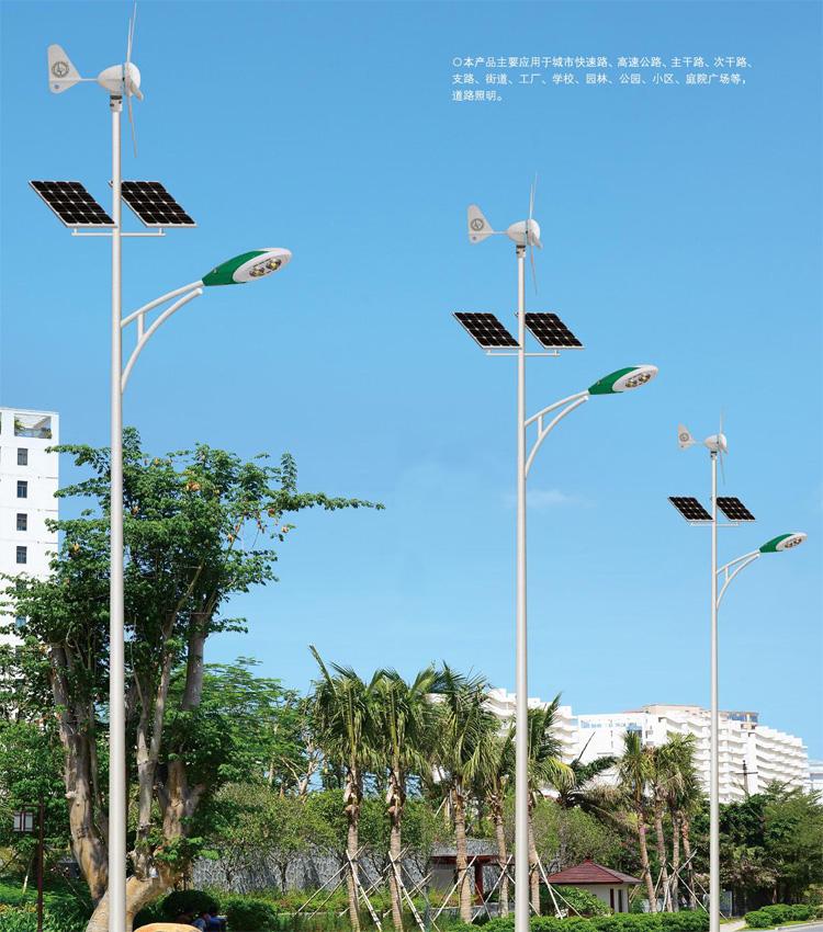 太阳能路灯应用案例-003