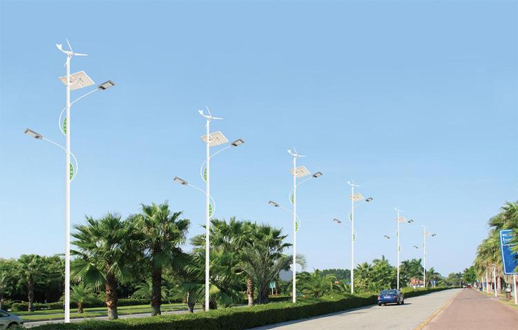 太阳能路灯应用案例-004
