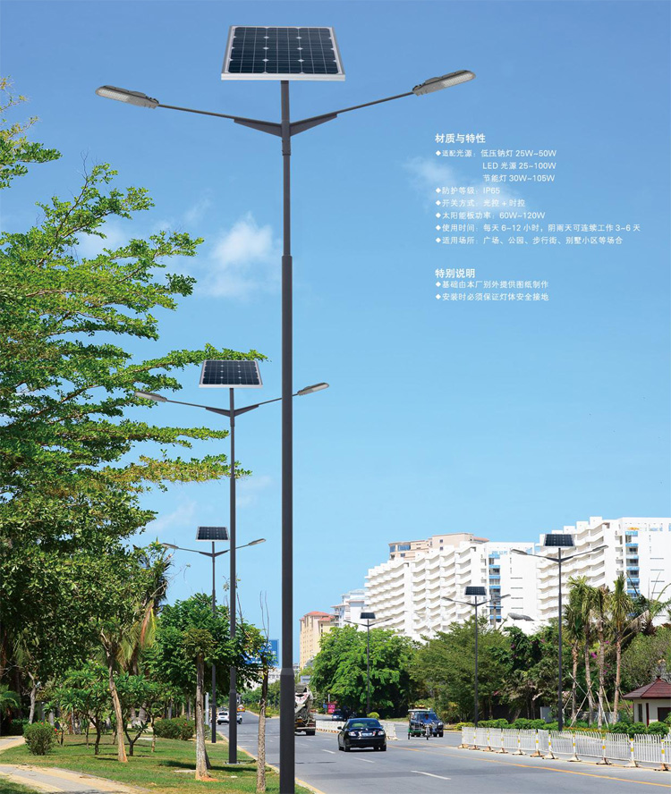 太阳能路灯应用案例-008